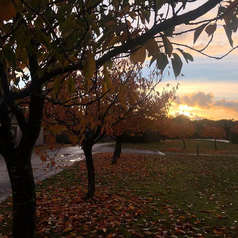 Bainland Country Park