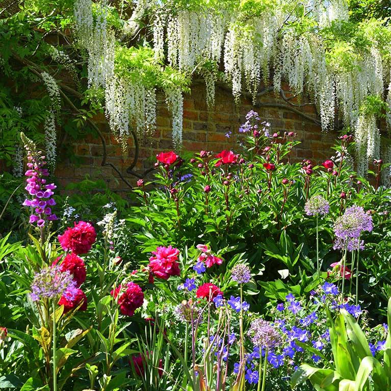 Doddington garden