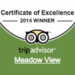 Tripadvisor Certificate of Excellence 2014 Winner