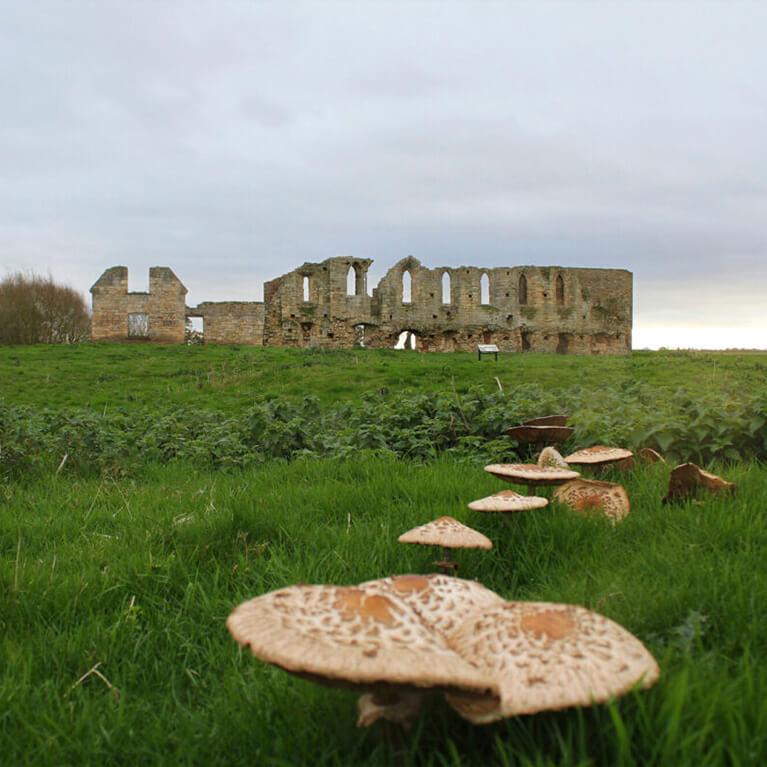 Tupholme Abbey
